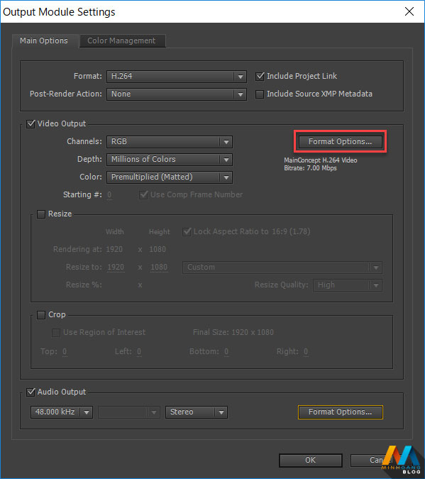 Video Output > Format Options...